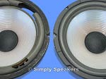 "10"" Poly Cone Woofer Speaker Repair"