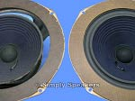 Large Advent Speaker Repair