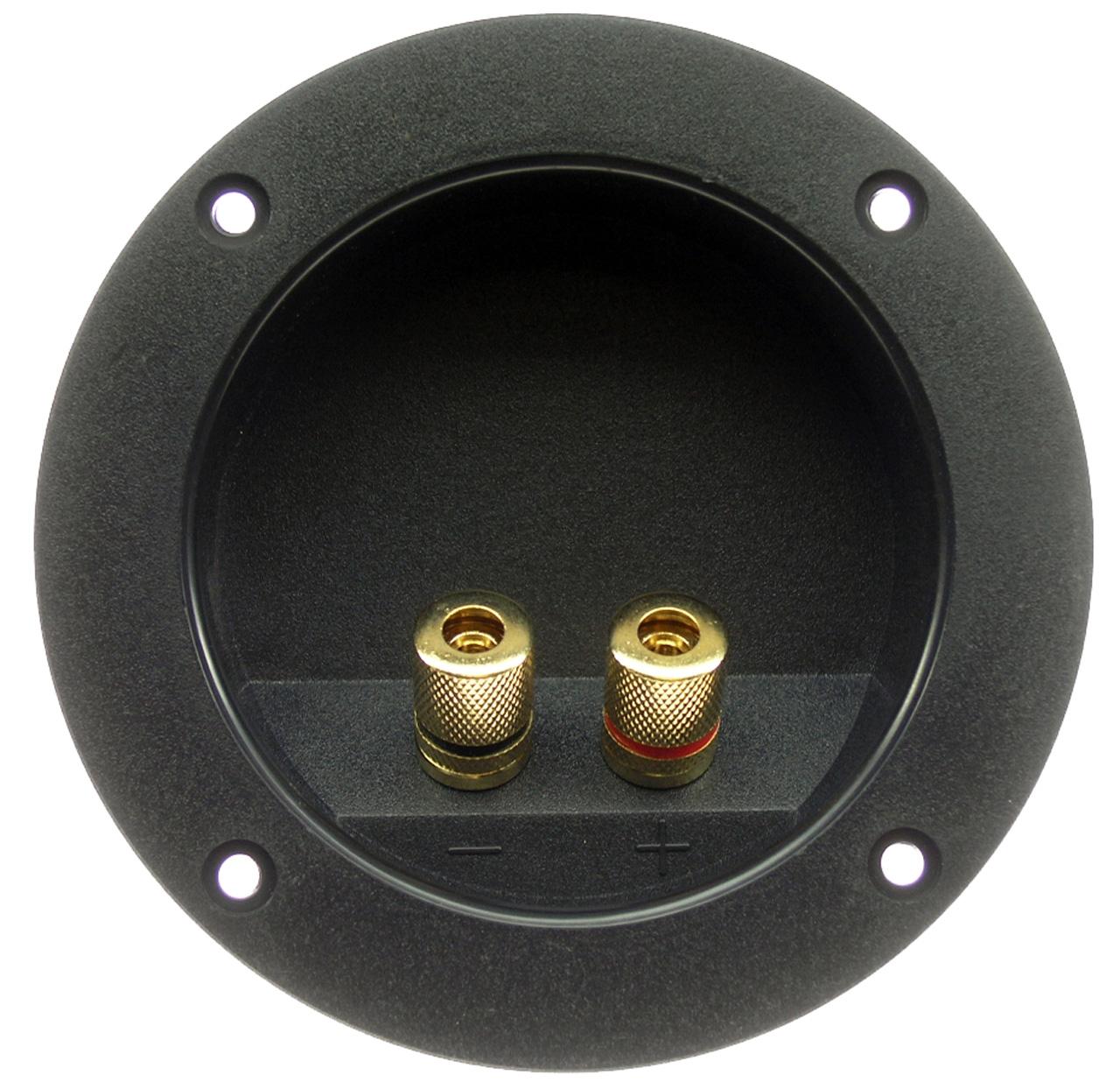 Speaker Terminal Connector, 5 Way Gold Binding Posts, RGT-4000