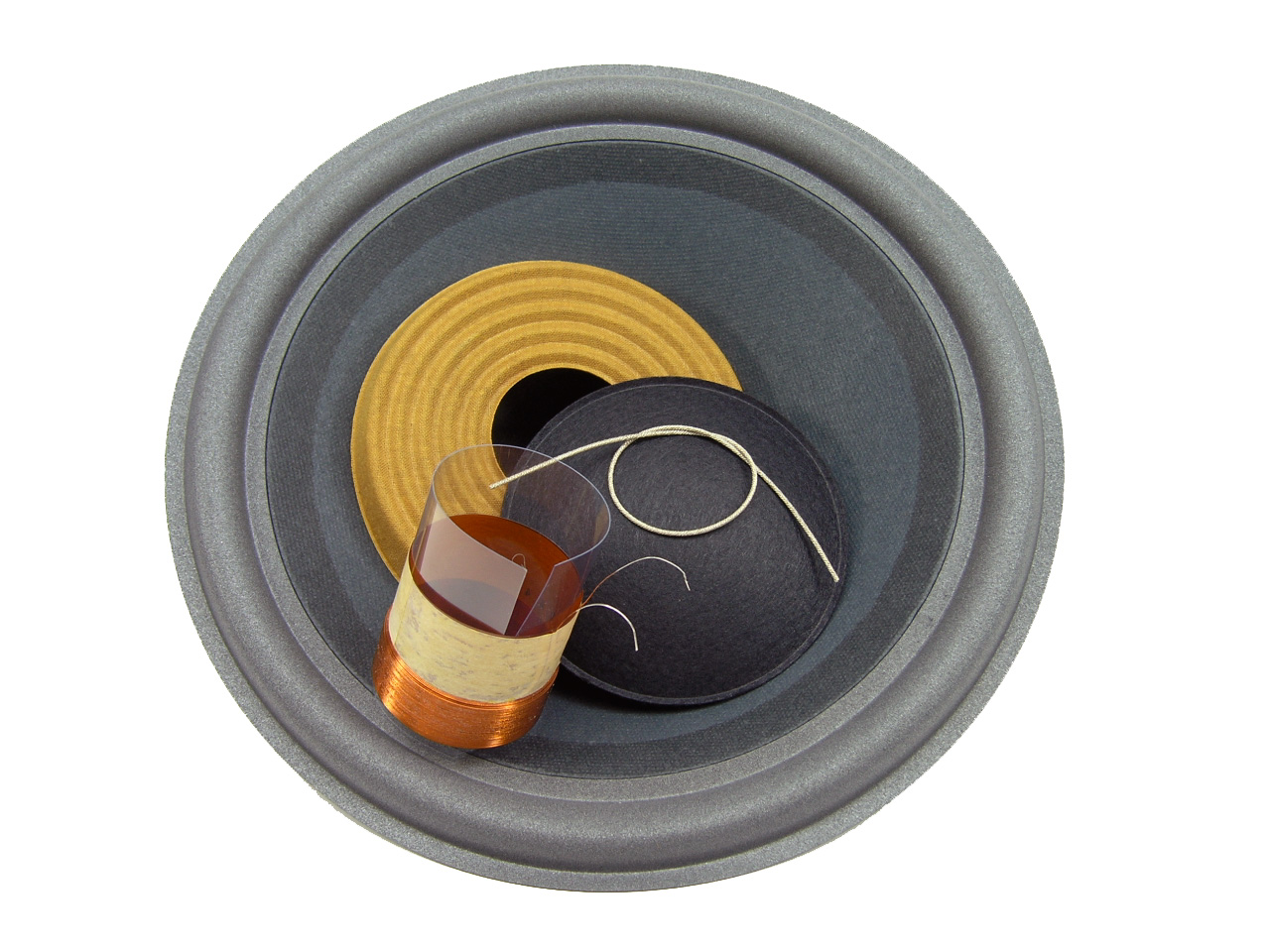 SS Audio Recone Kit for 12